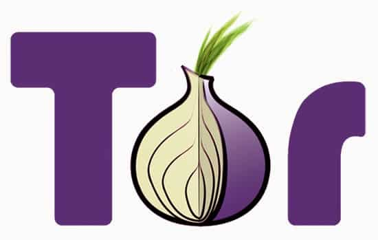Tor Anonymizer Project co-creator agrees that there is a bug in Tor and is working on rectifying it