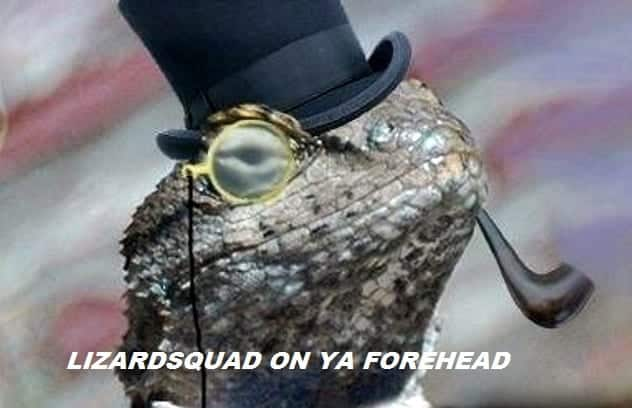 Call Of Duty and Destiny servers brought down by Lizard Squad
