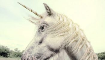 Internet Explorer 'Unicorn' bug being exploited in the wild