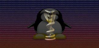 Epic Snake 'Turla' APT version targeting Linux machines