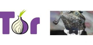 Lizard Squad Attacks Tor Network But Failed To Compromise