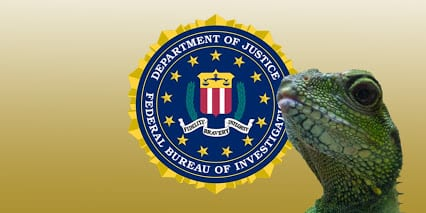 Lizard Squad in the FBI blizzard