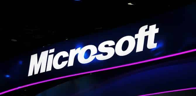 Microsoft says Friday's outage caused by software bug not cyber attack