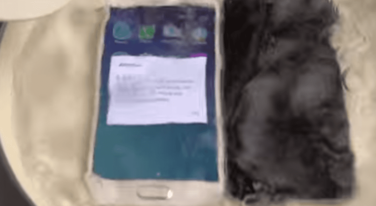 Check out What Happens When You Boil an iPhone 6, Galaxy S6