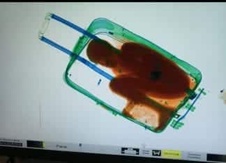 Woman tries to smuggle 8 year old boy into Spain in a suitcase