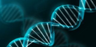DNA to be used to store digital data for future