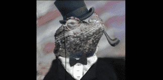 Lizard Squad hack and steal data, Cox to pay $595,000 fine according FTC