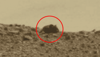 Huge alien mouse spotted on the Red Planet Mars