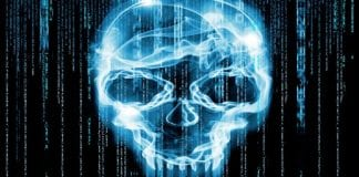 Microsoft leads FBI and Interpol Coalition to destroy millions of Botnets