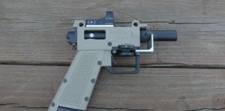 Gun, non-lethal projectiles