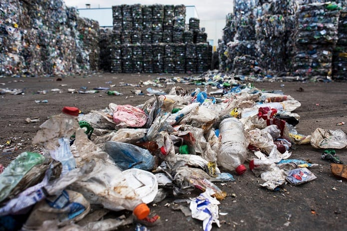 Plastic eating bacteria can consume waste, leading to a 'no garbage' area