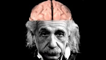 Do mathematicians have different brains to the rest of us?