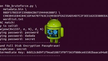 Step by step guide to crack Android full disk encryption