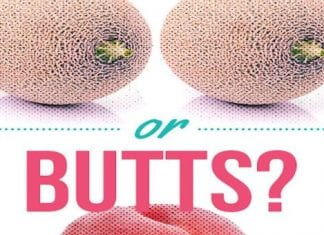 Boobs vs Butts Pornhub search results reveal what do Americans and rest of the world prefer most