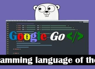 Programming language of the year award goes to 'Google Go'