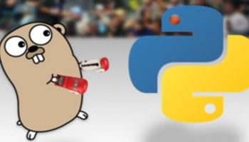 Transpile And Run Python Code Into Go Program With Google's Open Source 'Grumpy'
