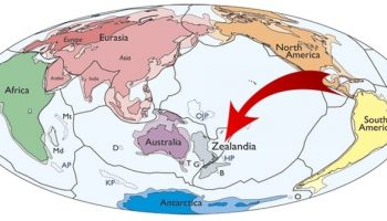 Scientists Discover World's 8th Continent Known As 'Zealandia'