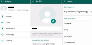 WhatsApp's Old Text-Based Status are Back in Beta version 2.17.95