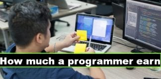 How much does a programmer earn ?