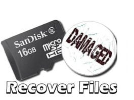 Here's how you can recover files from a corrupt/damaged SD card