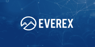 Everex ICO Indicates High Growth Potential