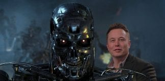 Elon Musk warns there's only 'a 5 to 10% chance' that artificial intelligence won't kill us all