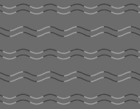Japanese researcher discovers a new optical illusion called 'curvature blindness'