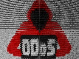 Lizard Squad And PoodleCorp Co-Founder Pleads Guilty To DDoS Attacks