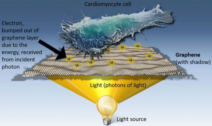 Graphene 'optical stimulation' could selectively kill cancer cells