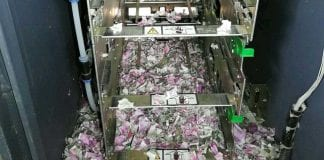 rat-chewed-up-money-atm-indian