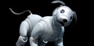 Sony's revamped aibo robotic dog to launch in the U.S.
