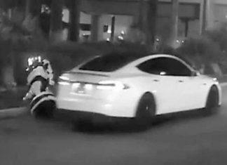 Self-driving Tesla hits and kills an autonomous robot at CES