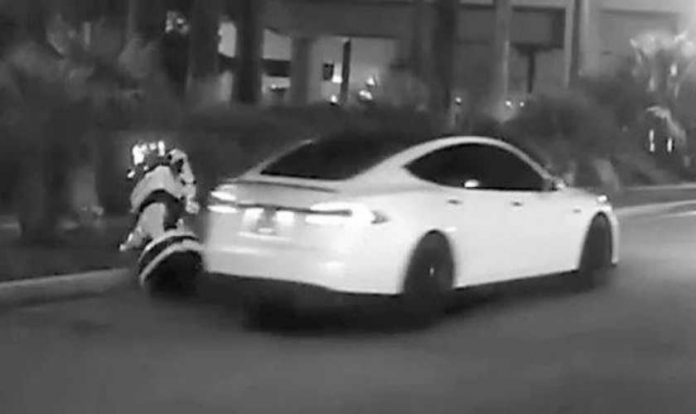 Self-driving Tesla hits and kills an autonomous robot at CES