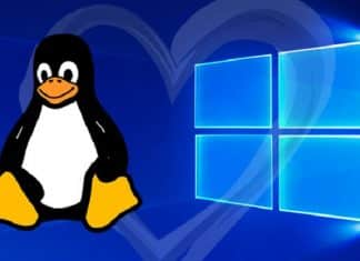 Microsoft releases Windows Subsystem for Linux 2 (WSL 2) to Insiders
