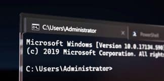 Microsoft Windows Terminal download