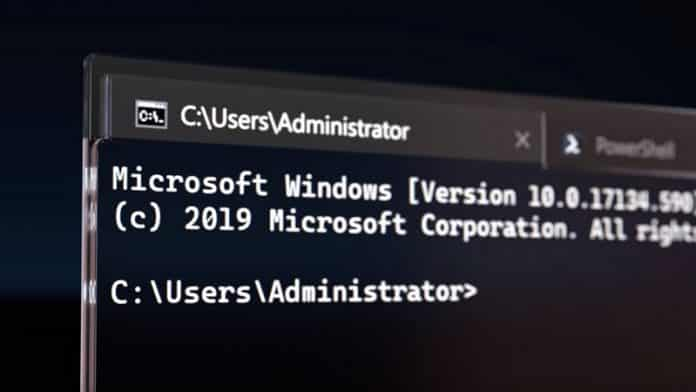 Microsoft Windows Terminal download