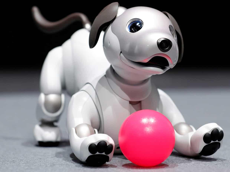 Sony AIBO Robotic Dog