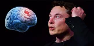 Elon Musk's Neuralink unveils brain microchip to let humans 'merge with computers'