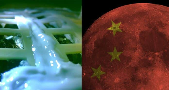 China Grows Plant On The Moon For The First Time