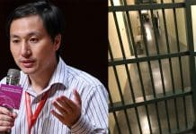 Chinese scientist faces three years of prison