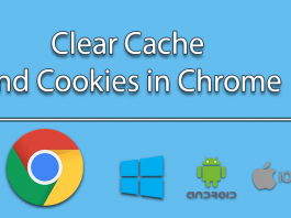 Clear Cache in Chrome