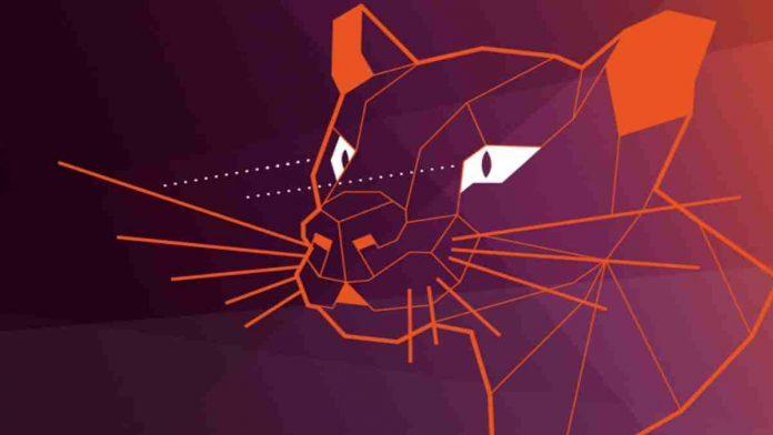 Ubuntu 20.04 LTS 'Focal Fossa'