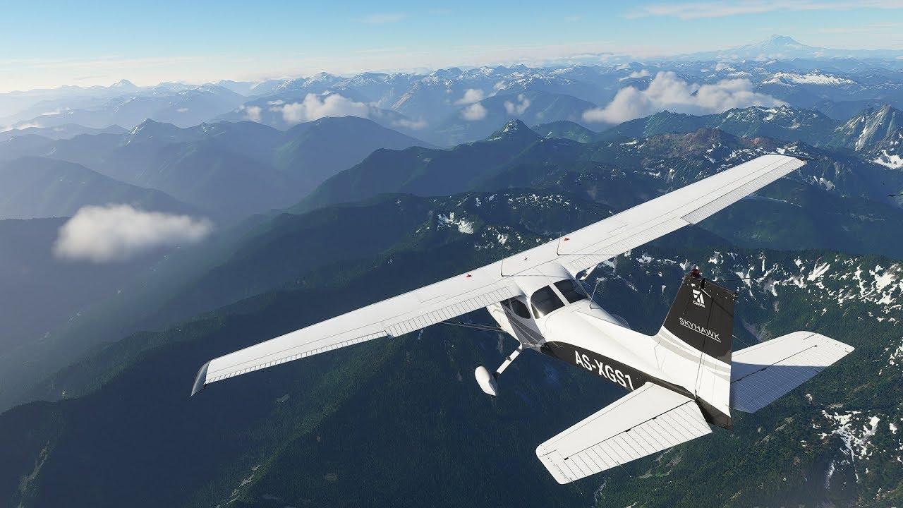 Microsoft Flight Simultor