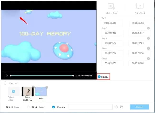 remove watermark from video – preview