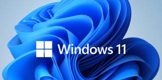 Fake Windows 11